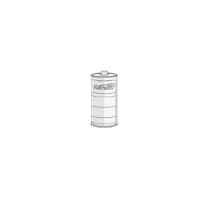 Keralitreiniger (2861) 1000ml (per stuk)
