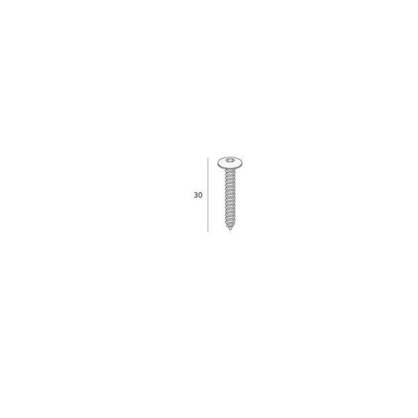 Keralit schroef Torx (T20) RVS (2801) 200 stuks per doosVerbruik circa 1 doos T.B.V. 10 panelen